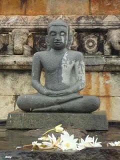 Photos from Ruwanwali saya - Sri Lanka