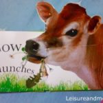 Pop Up Farm Animals-A Good Book for a Baby