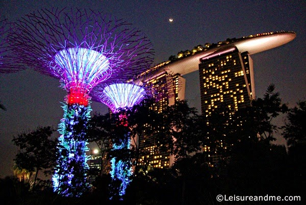 a sparkling christmas at gardens by the bay singapore leisure and me - Garden By The Bay Fireworks