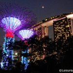 A Sparkling Christmas at Gardens by the Bay- Singapore