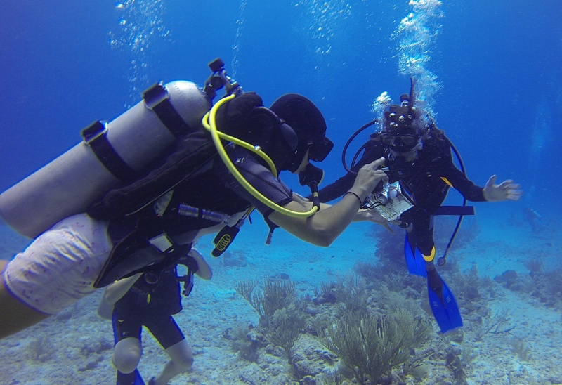 the PADI Dive Instructor Course in Thailand
