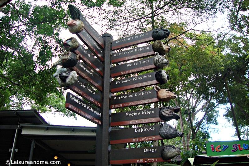 Singapore-Zoo-14