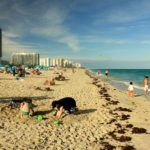 Tips for an Enjoyable Family Beach Vacation