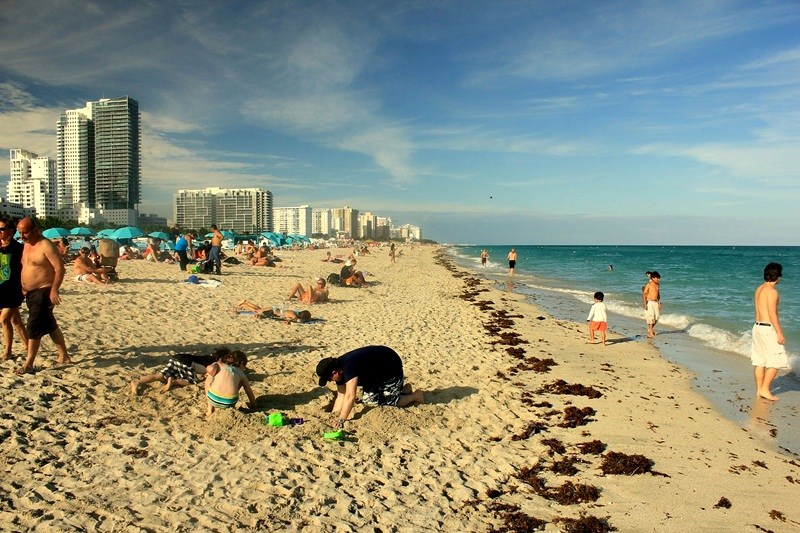 Best Things To Do In Miami Beach