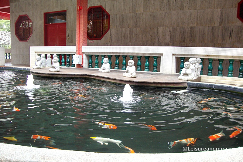 Koi Pond at Bright Hill Temple