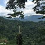 Road Trip to Kandy and Beauty of Kadugannawa