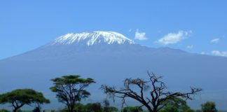 Must Know Tips for a successful Climb of Mt Kilimanjaro