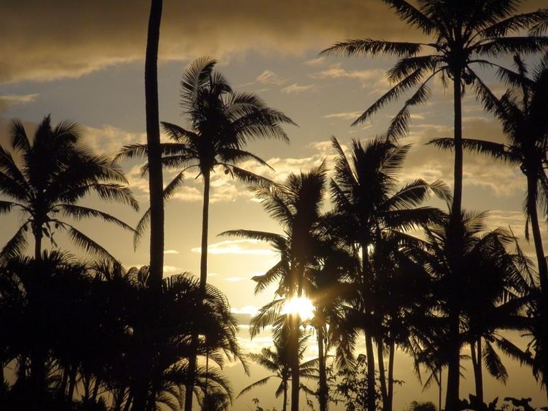 Reasons for visiting Fiji