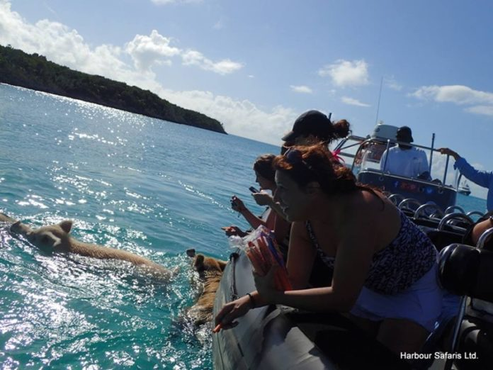 unique experience exploring Bahamas