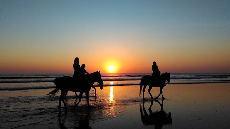 Andalusian Horse Riding Experience
