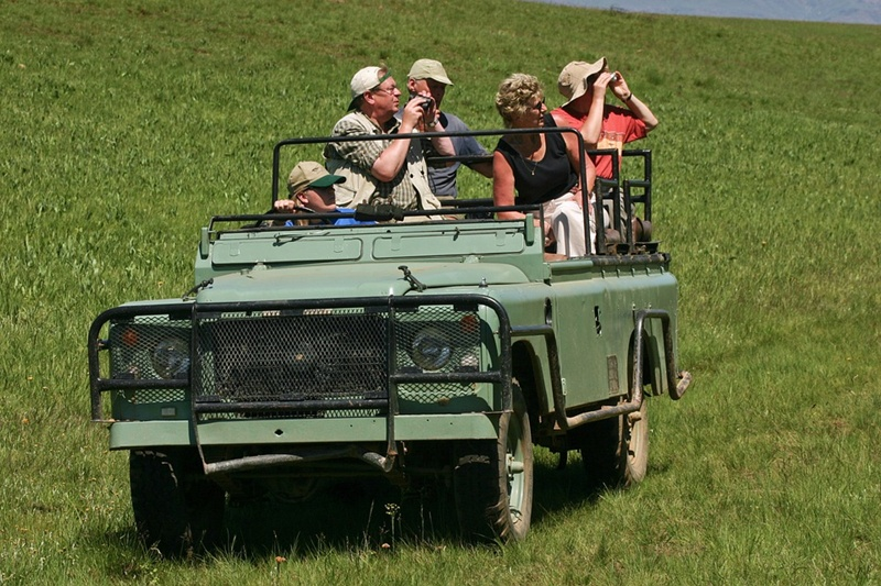 How to choose the best safari binoculars