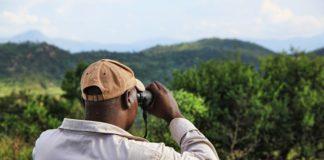 Planning a Gorilla Safari Trek