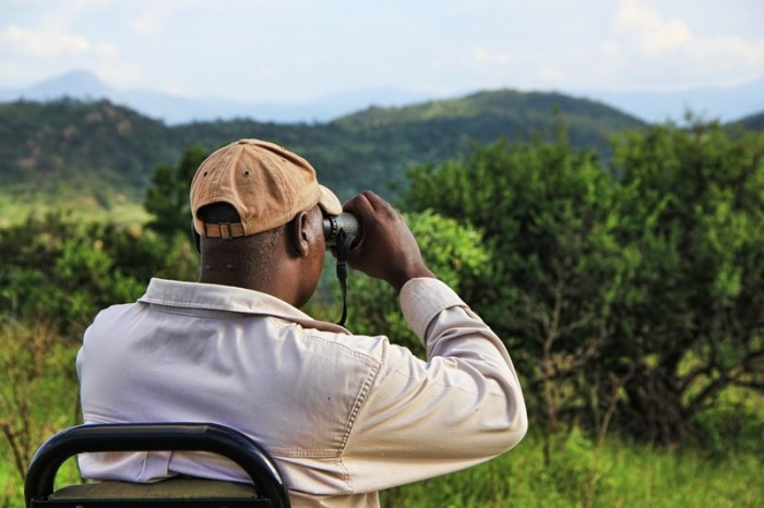 How to choose the best safari binoculars