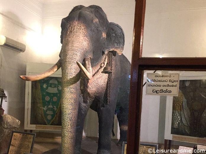 Raja Museum - Kandy , Sri Lanka