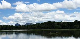Lake-Dambana-Sri-Lanka