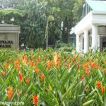 Istana Park Singapore – Another Oasis in Dhoby Ghaut