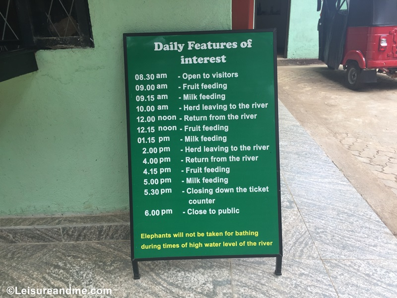 Pinnawala Elephant Orphanage schedule