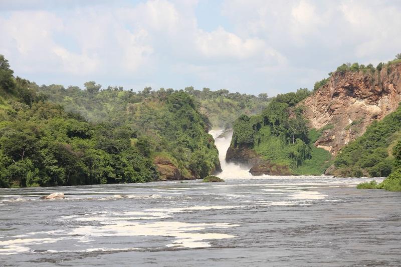 Top 5 Things to Do on a Family Safari in Uganda