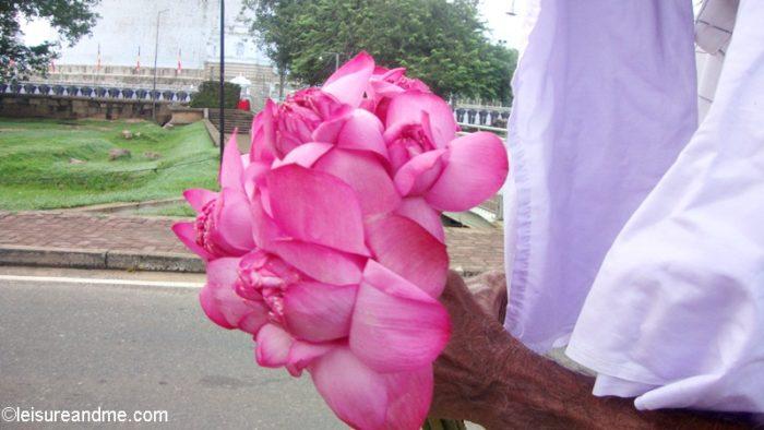 Sri Lanka Holiday: Time to say Goodbye
