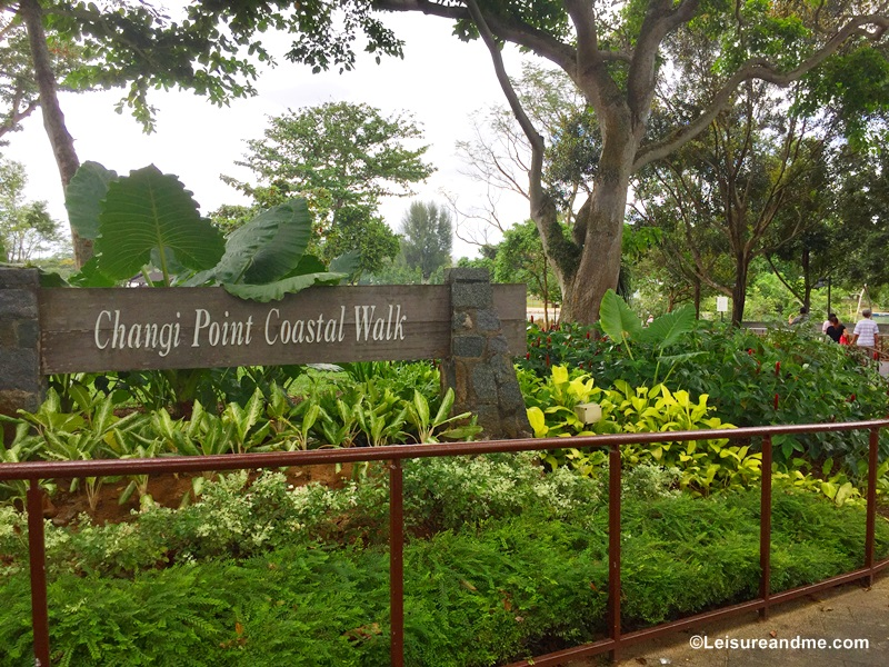 A Day at Changi Beach Park : Singapore