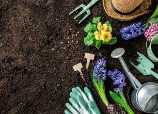 Bring Nature to You with These Garden Ideas