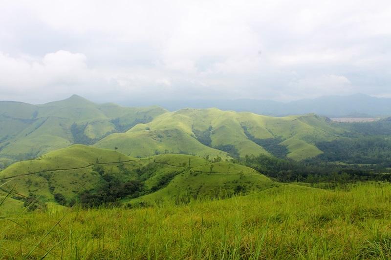 Top 5 National Parks of Karnataka