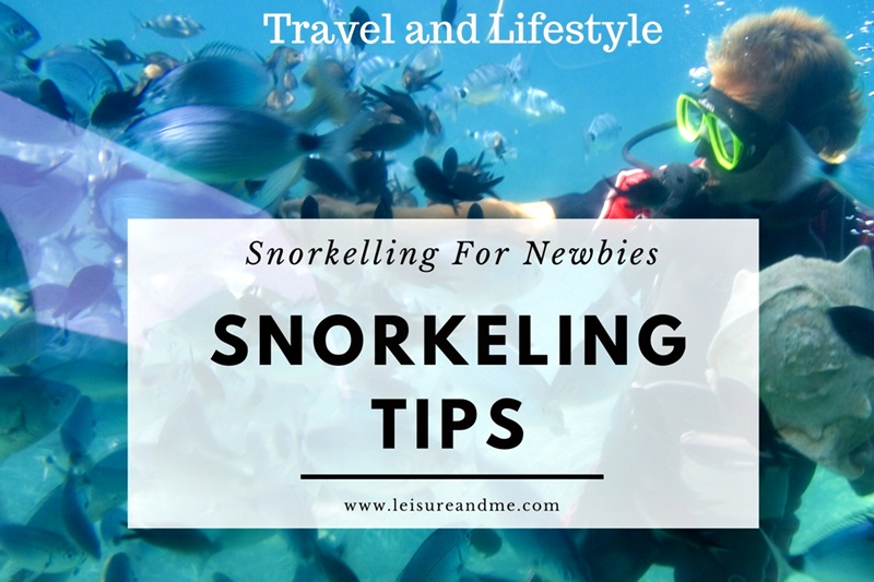 Important Snorkeling Tips For Newbies