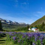 Best Season to Visit Iceland