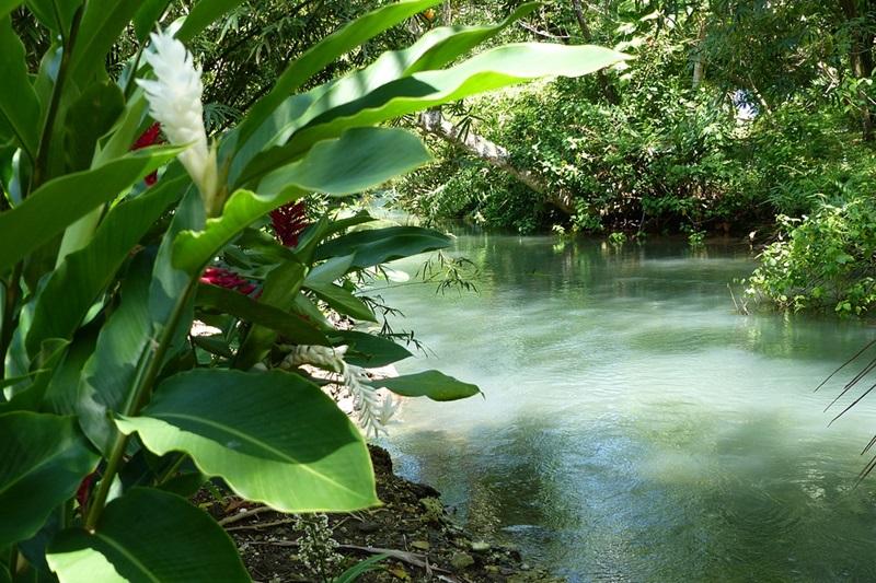 Best of Jamaica Tourism