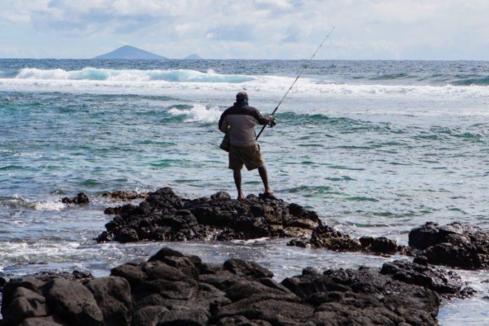 Fishing Tackle Guides